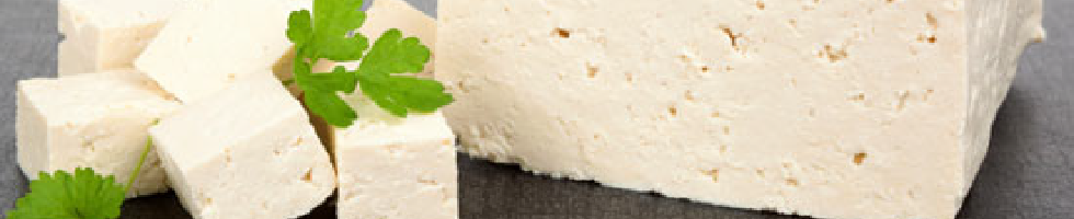 とうふの学校 – 「おから」「豆腐」素材の食べ物についての授業カテゴリーページ