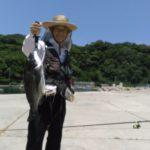 山口県萩市の離島相島スイカとさつまいもで有名な相島